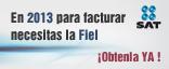 Firma Electrónica Avanzada (Fiel)