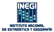 Fondo Sectorial de Investigación CONACYT-INEGI